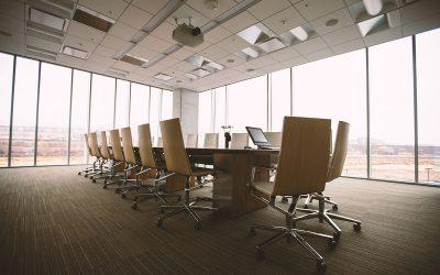 Directors Liability